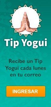 Tip Yogui Banner