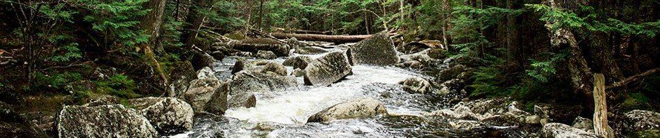 Imagen sonido del río