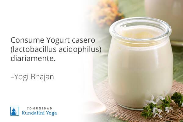 8 Recetas Yóguicas Con Yogurt Casero Y Cómo Hacerlo En Casa