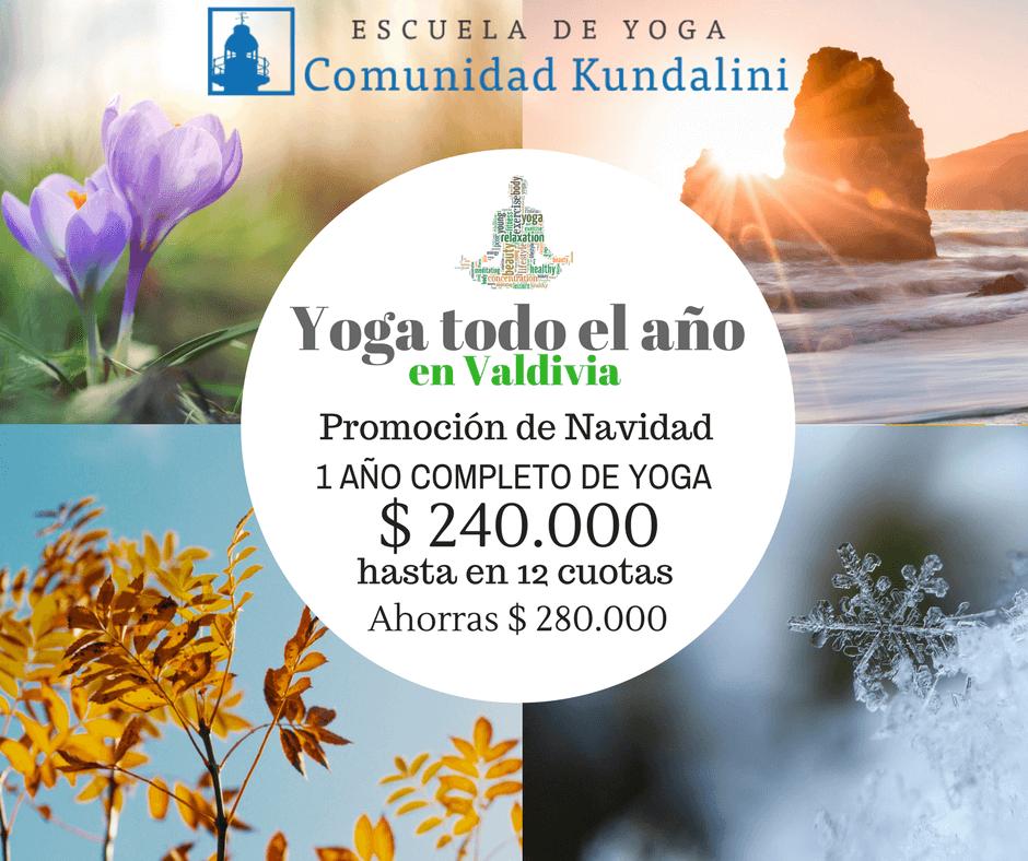 Yoga Todo El Año - Valdivia