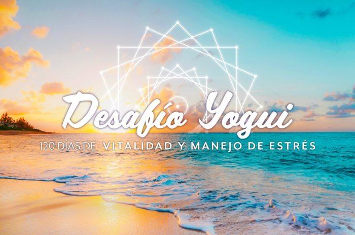 Logo desafio yogui 4