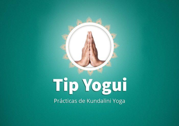 tip yogui curso woo
