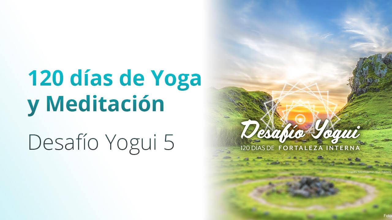 Desafío Yogui 5